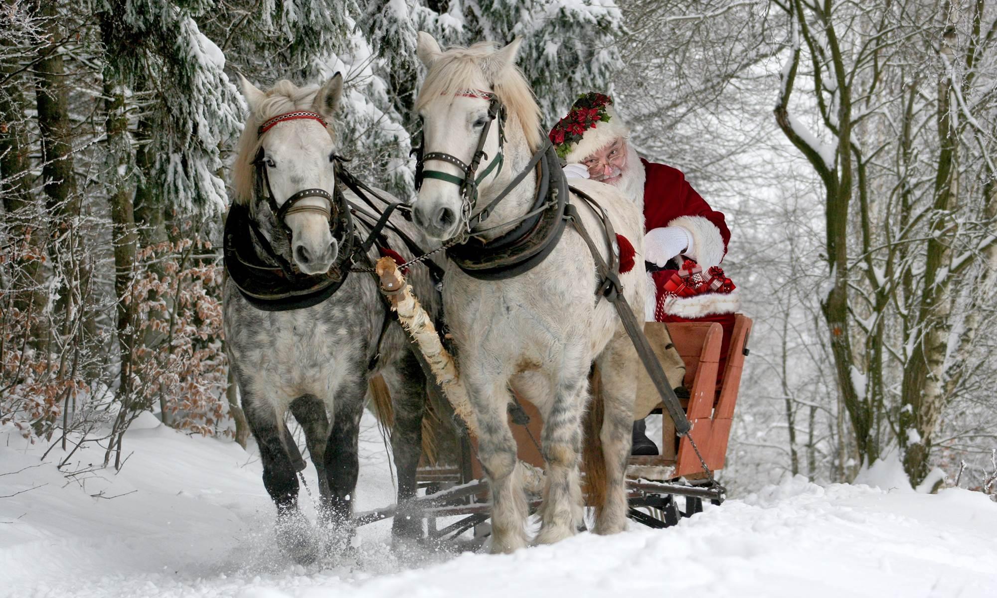 SCHREIBEN IN BERKIN | Weihnachtsgeschenke - Gutscheine